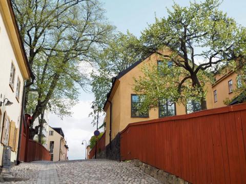 Old houses along Monteliusvägen