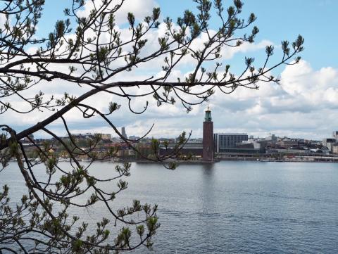 Stadshuset seen from Monteliusvägen